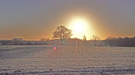 İngilizler : morning sunrise over winter countryside landscape
