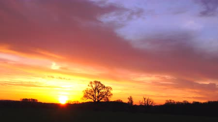şafak : morning sunrise over countryside landscape timelapse Stok Video