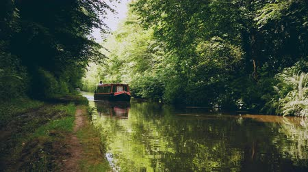 İngilizler : english canal tow path lush green trees Stok Video