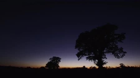 wipe away : rural dusk into night time lapse Stock Footage