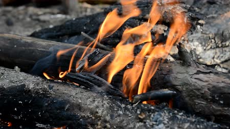 kamp ateşi : small campfire burning