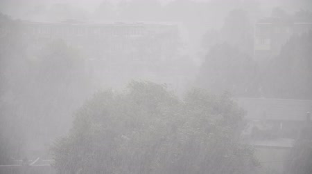 torrential rain : Extreme Strong Winds, city storm