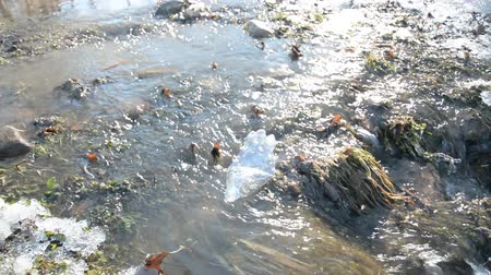 apodrecendo : Plastic bottles in spring stream hd footage Stock Footage