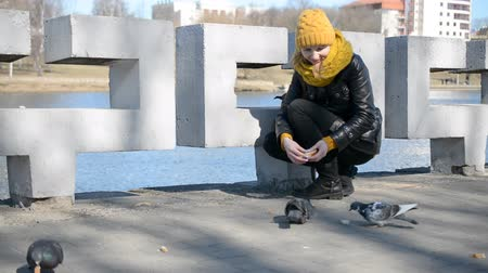 hlad : Beautiful girl feeding pigeons in the city park hd stock footage