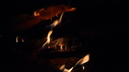 kamp ateşi : night campfire flame hd stock footage