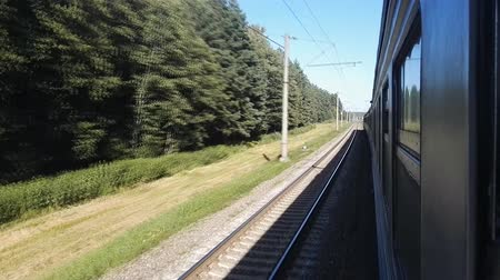 bělorusko : Train wide angle view out the window hd stock footage