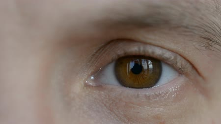 оптический : Brown male eye close-up hd