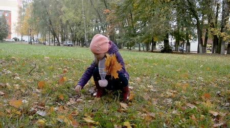 Little girl child collects fallen leaves in the autumn park.