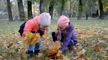 two little girls, on the nature throwing yellow leaves, playing, laughing hd stock footage