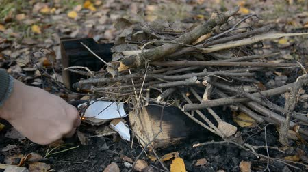 queimado : traveler makes a bonfire in the autumn forest Vídeos