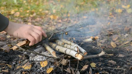 hamu : Bonfire for a picnic in the autumn forest hd stock footage