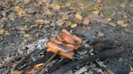 kiełbasa : Delicious and fragrant sausage roasted on the campfire in the summer forest, travel food concept Wideo
