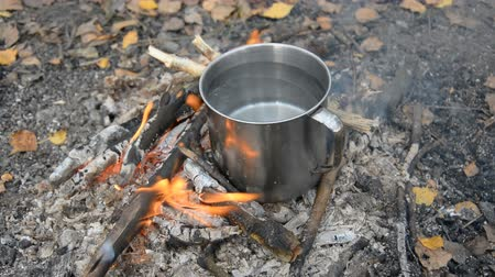 fuego cocina : A traveler boils water on a small fire in the woods in a large metal mug for cooking and hot tea or coffee Archivo de Video