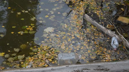 hijenik olmayan : plastic bottle in the lake, environmental pollution problems Stok Video