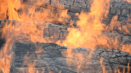 kamp ateşi : close view of how large wooden beams burn hd stock footage