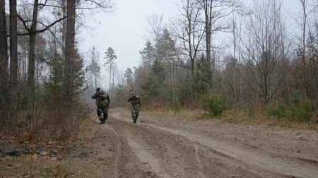 obránce : tactical movement of two armed men along a forest road, hd stock footage