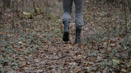 přežití : Shoes hiking outdoors taking steps on top of tree log in lush forest adventure travel concept hd stock footage