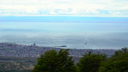 chileno : Punta Arenas Forrest caminata con vista al mar en Chile Archivo de Video