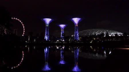 skypark : Singapore City Buildings and Architect day and Night Stock Footage