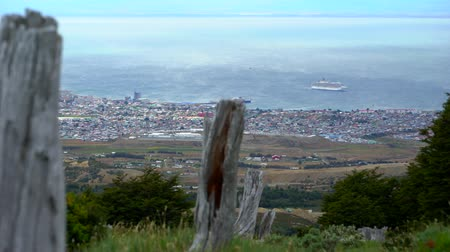 şapkalı : Punta Arenas Forrest Hike with Ocean View Stok Video