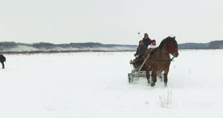 epiphany : Pietrosani, Romania - January 6, 2017: People ride horse drawn carts on a snowy field, before a traditional Epiphany horse race in Pietrosani, Romania. Stock Footage