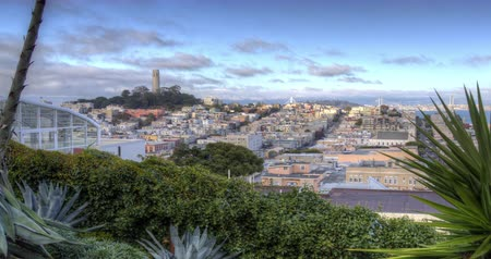 секунды : San Francisco. A Panoramic Skyline View of North Beach and Coit Tower. Zoom out.