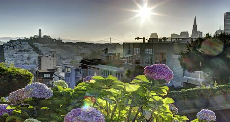 Sunrise over San Francisco. Shot from the crooked Lombard street.