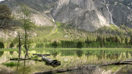 Yosemite Valley Landscape. Reflections on Standing Water during Spring Flooding. Stock Footage