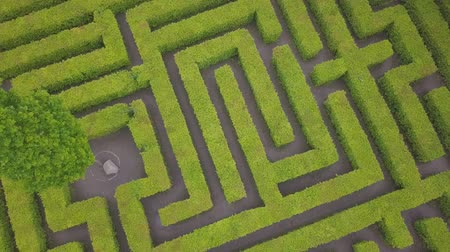 havadan görünüş : Aerial view of maze, green labyrinth in park, drone point of view from above.