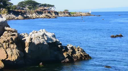 Calm waters in the Monterey Bay near Pacific Grove. Rocks in the foreground. Pacific Grove and Lovers Point in the background. Sailboat visible in the bay. Camera locked.
