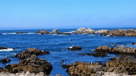Waves on the rocks at Monterey Bay, California. Camera handheld, panning left to right. Stock Footage