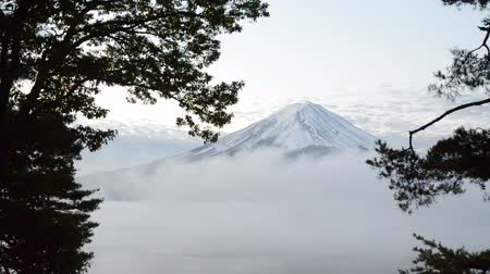 montar : Timelapse mount fuji and moving fog in the morning at kawaguchiko japan