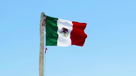 Mexican flag in the wind, blue sky in the background. Wooden pole with mexican state flag in the fresh wind. Стоковые видеозаписи