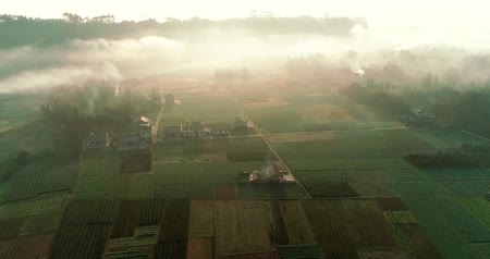 Aerial shot of beautiful Chinese New countryside village in the morning sunlight, with mist floating on the farm land field, around with tea fields, Cooking smoke curls up. Beautiful China 4k clip