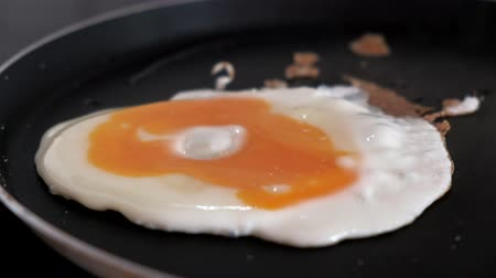 Close-up of salting one egg in a frying pan Стоковые видеозаписи