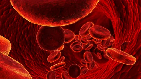 клетка : 3D blood cells in vein.