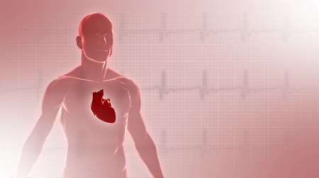 puls : Background with 3d man with heart. Seamless loop.