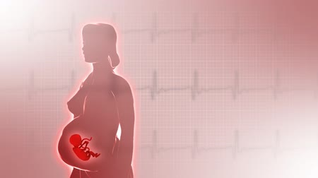 feto : 3d rotating pregnant woman in 2nd trimester with fetus on ecg background. Seamless loop. Stock Footage