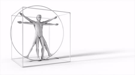 davinci : 3d rotating Da Vinci man. Seamless loop. Stock Footage