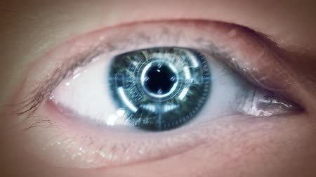 persiana : Close up to eyeball with futuristic targeting system. Loop.