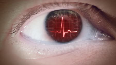 puls : Eyeball with ecg graph on iris. Loop.