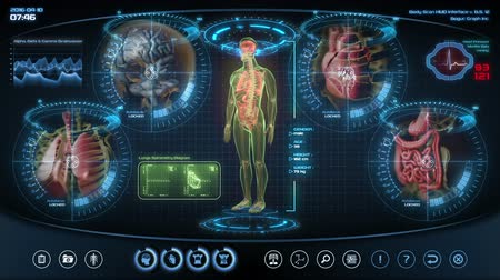 anatomia : Futuristic human anatomy scan. Holographic medical application interface. Seamless loop.