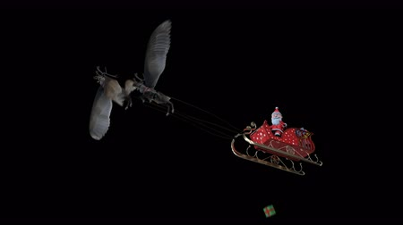 geyik : The 3D animation loop Santa Claus drop gift box on sledge flying reindeer flying include alpha background with PNG format.