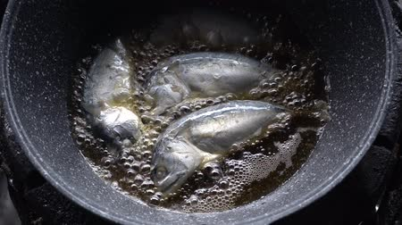 скумбрия : mackerel getting fried in a pan full of oil. loopable. Стоковые видеозаписи