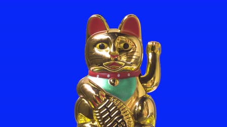 lucky charm : Close up shot. Lucky cat or maneki neko with money symbol for chinese culture. Good fortune for lunar new year. Stock Footage