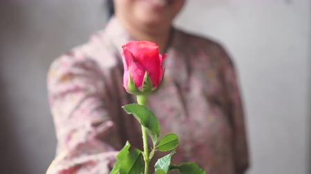 Asian lady with smile give a pink roses to you. for love one.