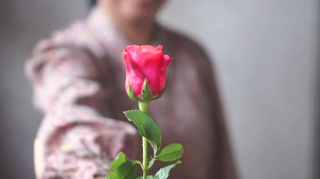 Asian lady with smile give a pink roses to you. for love one. Slow Motion.