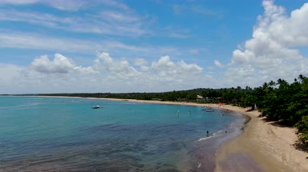 brezilya : Aerial view of tropical white sand beach, palm trees and turquoise clear sea water in Praia do Forte, Bahia, Brazil. Travel tropical destination in Brazil Stok Video