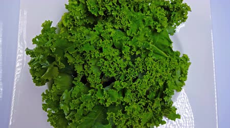 Kale Best Superfood Ever 4K Wideo
