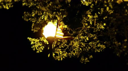 Street Lamp Post and American Flag at Night 4K Wideo
